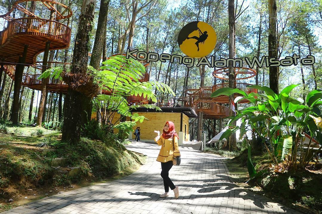 Wisata Kopeng Menikmati Indahnya Wisata Alam Di Lereng Merbabu