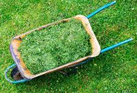 cara membuat kompos dari daun